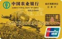 農業銀行金穗臨沂公務卡